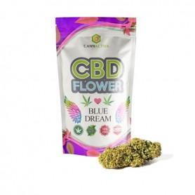 Susz Cannactivia 5 g - Blue Dream 12% CBD